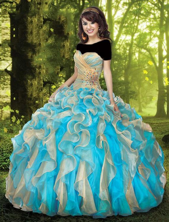 Princess dress. (4)