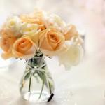 عکس گل در گلدان