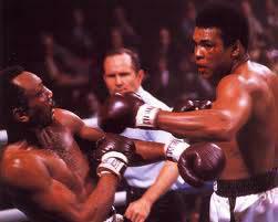 history1-boxing-fan