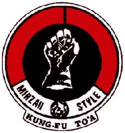 kung-fu1-toa