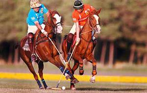 polo2-sport