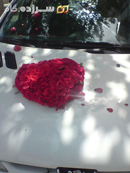 تزیین ماشین عروس پژو 206