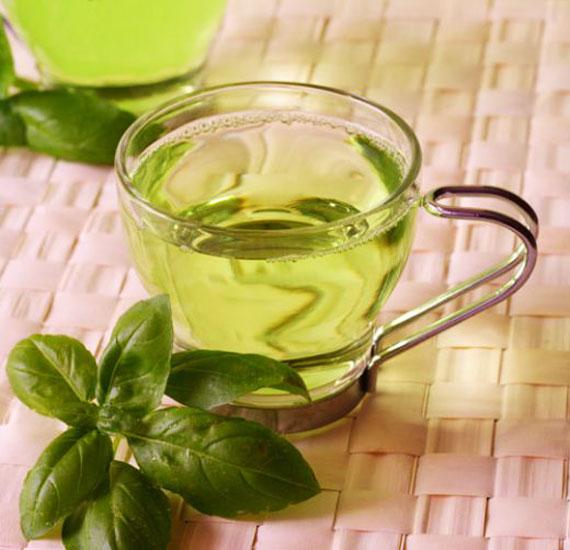 خواص گیاهان دارویی چای سبز,خواص گیاه چای سبز,خواص گیاهی چای سبز