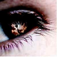 eyefal