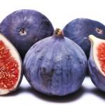 خواص دارویی انجیر,خواص میوه انجیر,خواص دارویی انجیر خشک,خواص دارویی عرق برگ انجیر