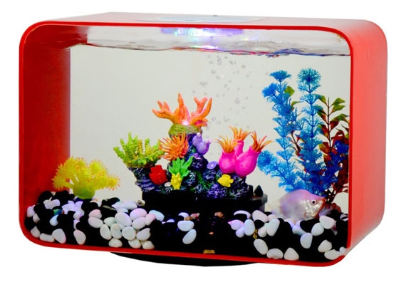 fish-bowl-(11)