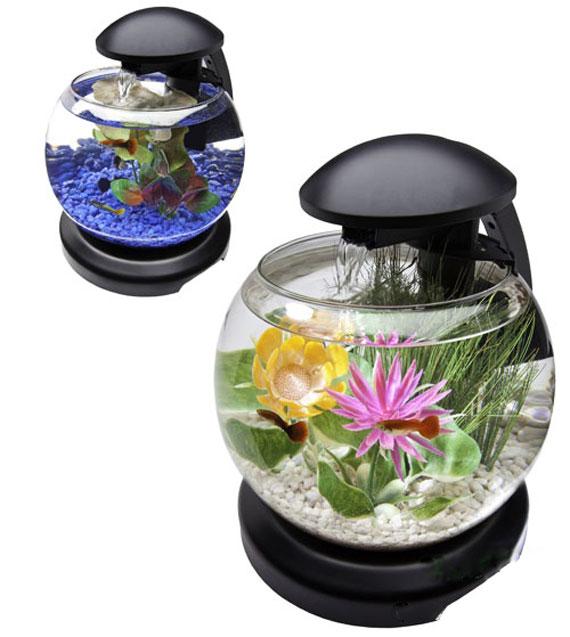 fish-bowl-(2)
