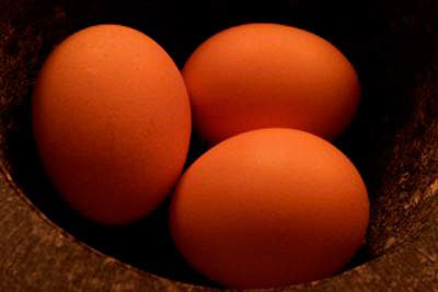 تخم مرغ را بشوییم یا نه