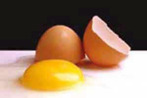 نگهداری طولانی تخم مرغ