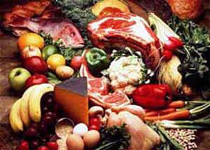 نگهداری و مصرف غذا