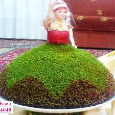 آموزش سبزه عید عروسکی