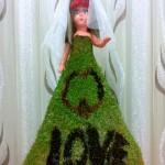 سبزه عيد عروس