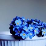 گل به رنگ ابی, گل آبی, گل آبی زیبا, دانلود عکس گل آبی, عکس گل های آبی,